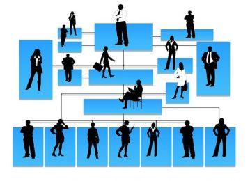 La importancia de los organigramas en las empresas